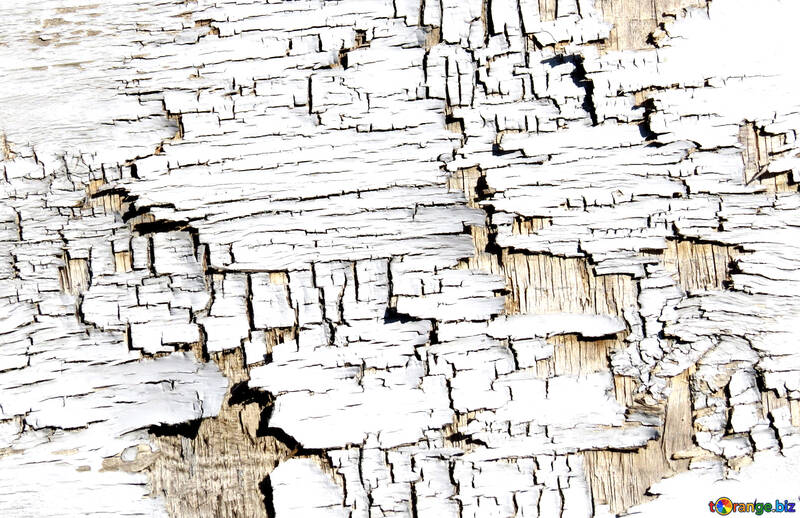 Flaky paint or  Cracks wood paint №54175