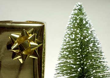 Gift   tree №6610