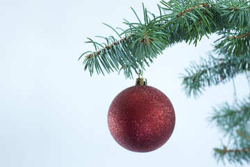 Red  fur-tree christmas ball  at  White  background №6736