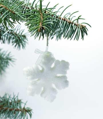 Snowflake  at  tree. №6799