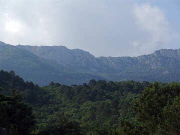 Montaña maderas. №6940