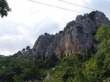 Wall  to  Climbing №6959