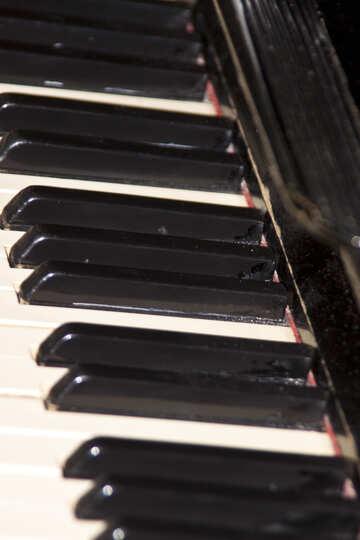 Piano №6159