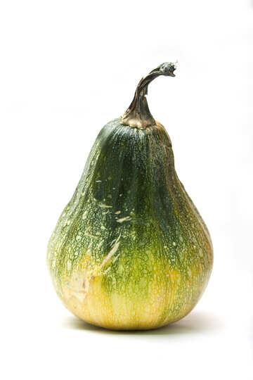 Pumpkin   form  Pears №6001