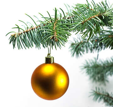 Gold ball at tree. №6793