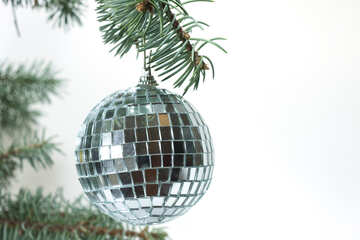 Mirror  ball  at  tree. №6784