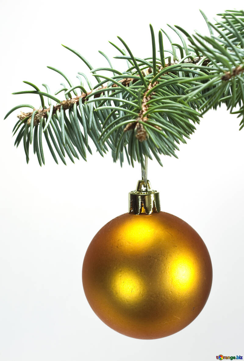 Toys  , Christmas tree ball on ,  branch. №6791
