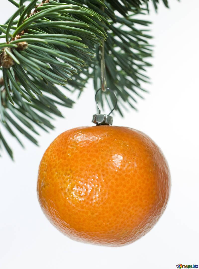 Mandarino ramo. №6808