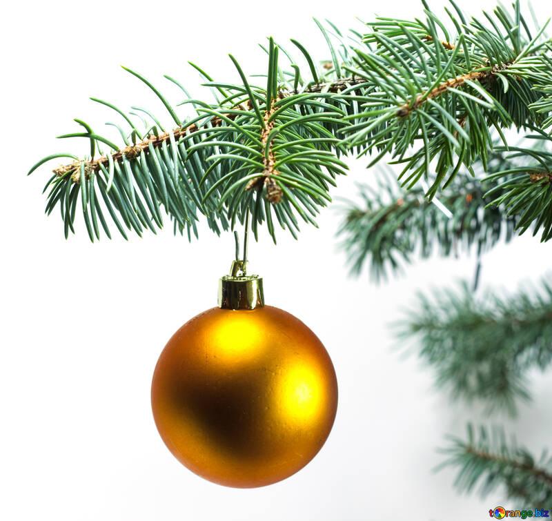 Gold  ball  at  tree. №6793