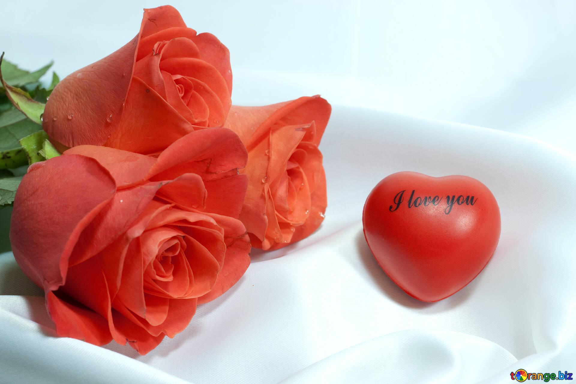 Открытка цветы я тебя люблю, гиф доброе утро