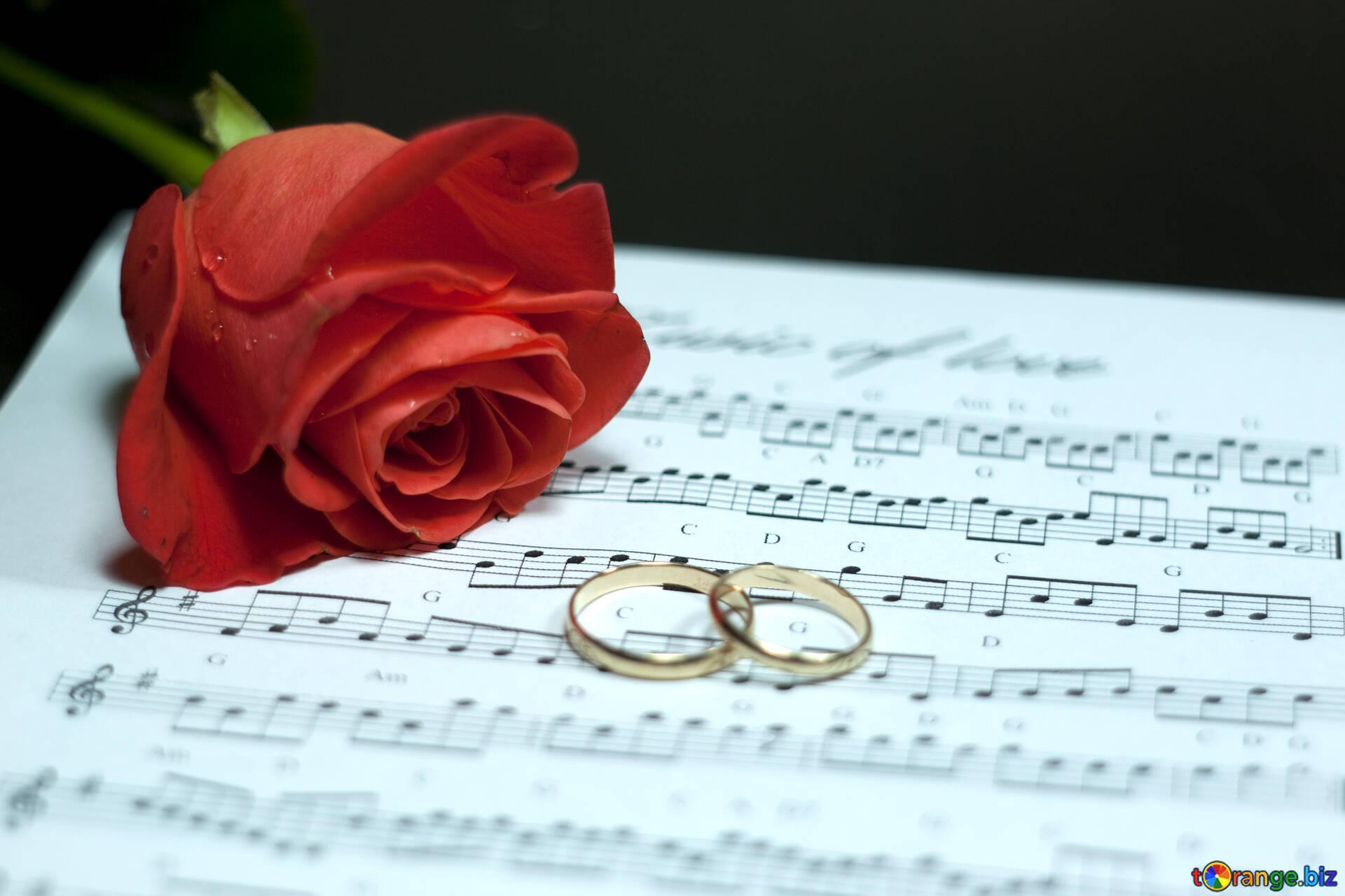 Открытка свадебная музыка