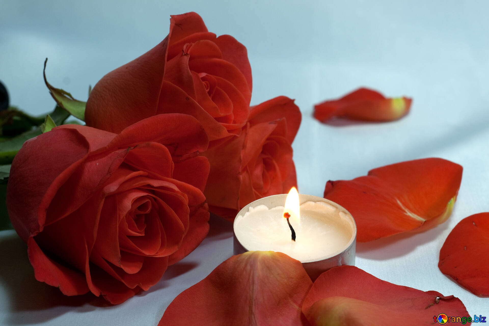 Romantisch Nacht . Bett , Rosen Und , Blumenblätter Kerzen.