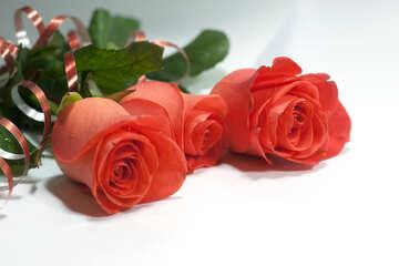 Mazzo Rose №7206