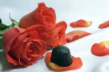 Chocolate  Candy  and  roses