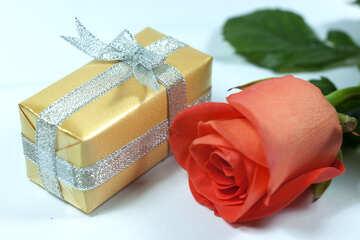 Gift  woman №7194