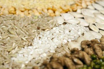 Cereals №7296
