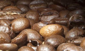Fritto caffè №7304