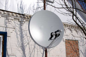 Satellite TV №7550