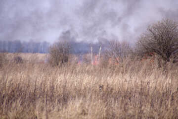 Fire  at  fields. №7432