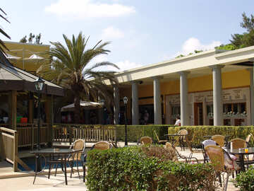 Summer  Cafe  inter  stores №7003