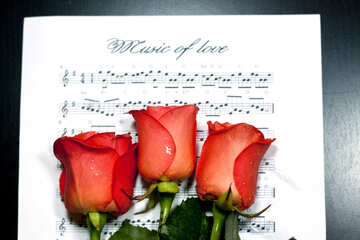 Flowers  and  music №7144
