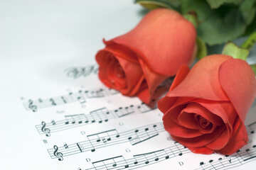 Two- Roses  and  Background notes .  №7279