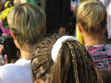 Dreadlocks №7997