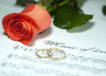 Rosa , wedding  ring  and  Notes . Music  to  lovers. №7230