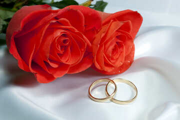 Two- roses , two  ring  at  bed №7223