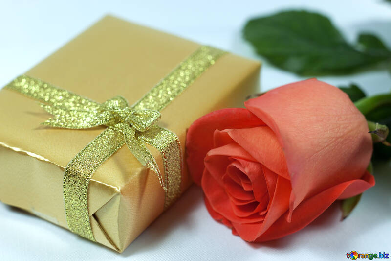 Gift №7226