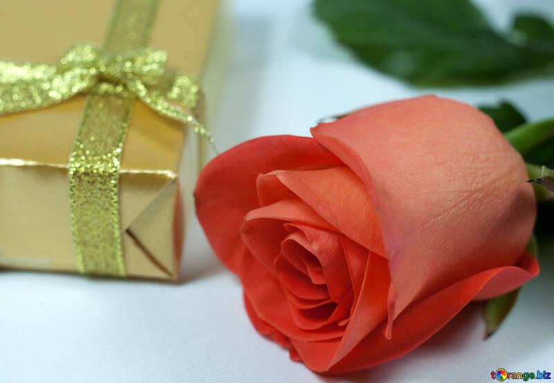 Gift  at  anniversary №7231