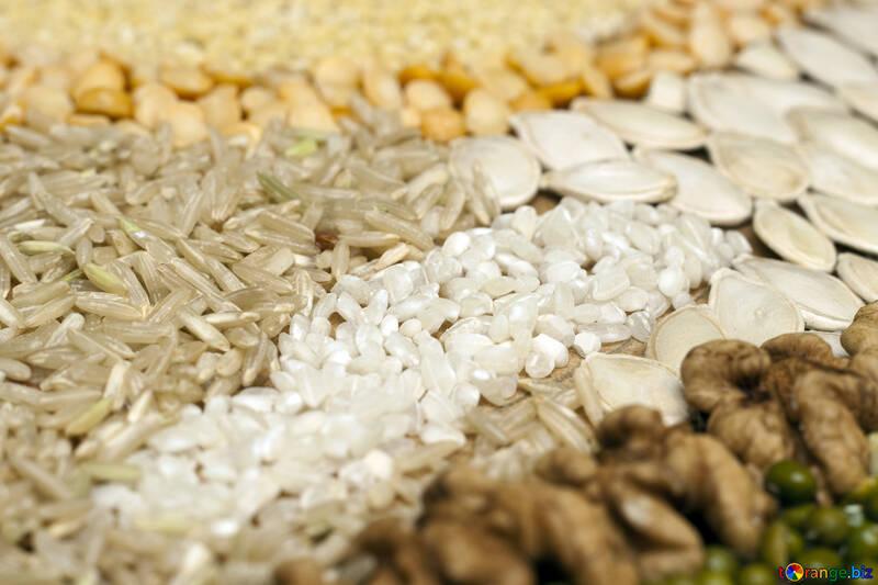 Risultato immagini per pasta  cereali