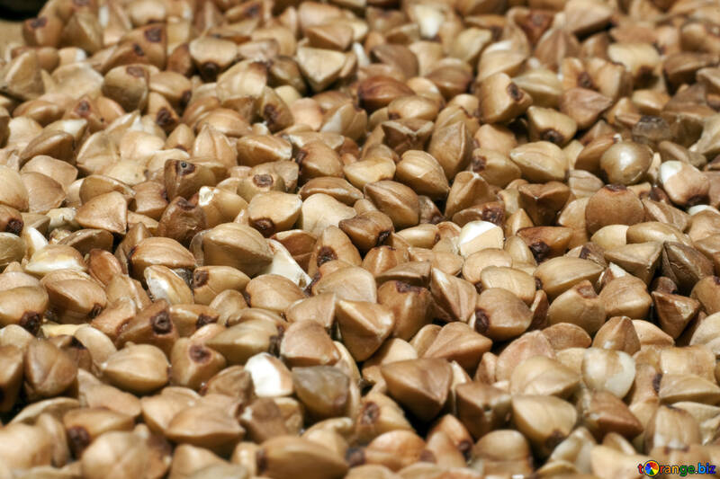Buckwheat №7290