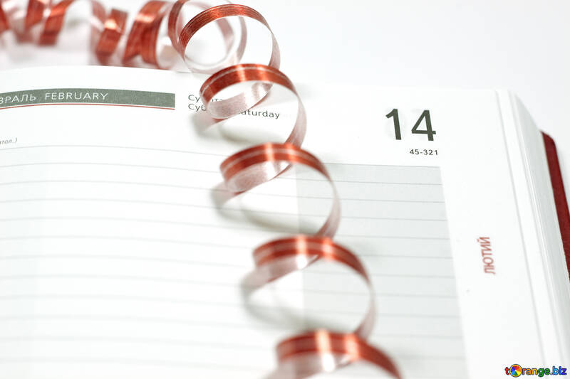 Red  Ribbon   diary. №7162