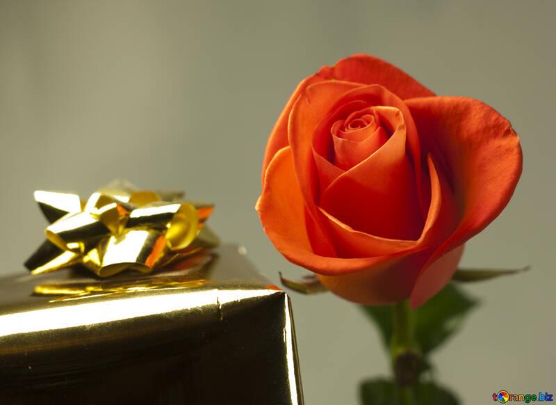 Gift  woman №7158