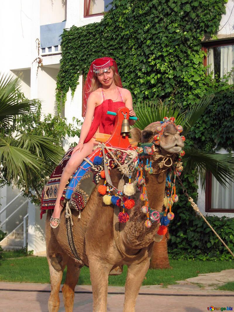 Mädchen an Kamel. №7841