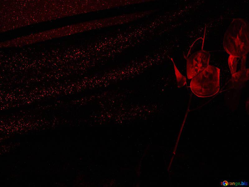 Dark  Red  background. №7685