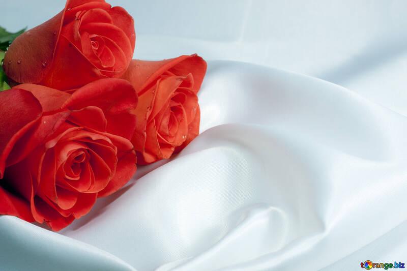 Blumenstrauß Rosen an Geschäft Tabelle zu Liebling. №7244