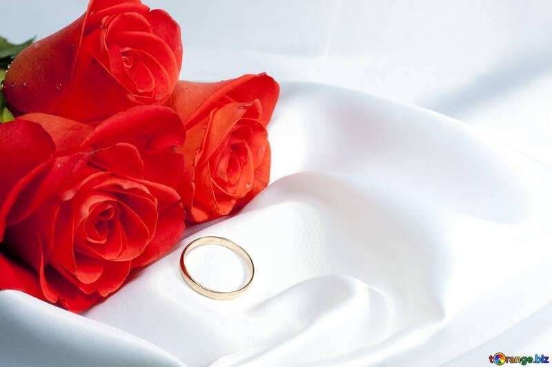 Ramo Rosas y oro anillo en Blanco cama Ropa interior №7227