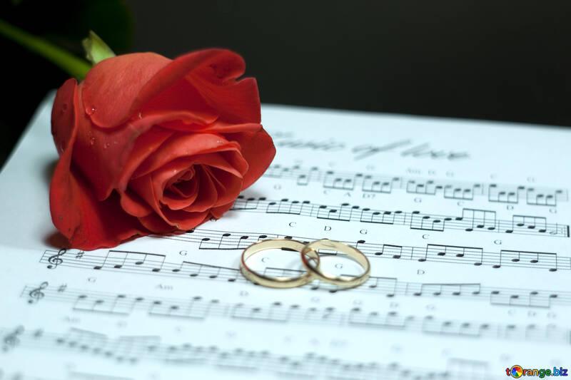 Enhorabuena en boda. №7225