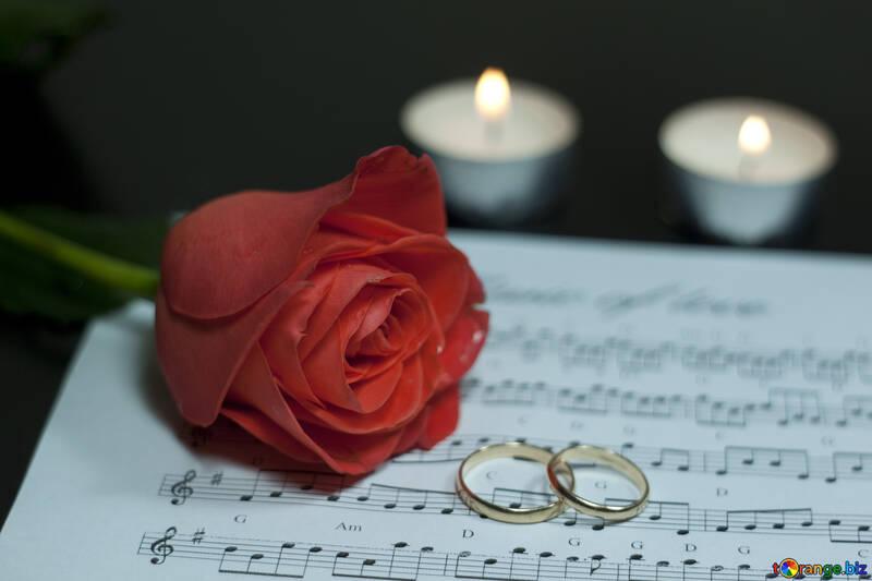Pantano Mendelssohn №7257
