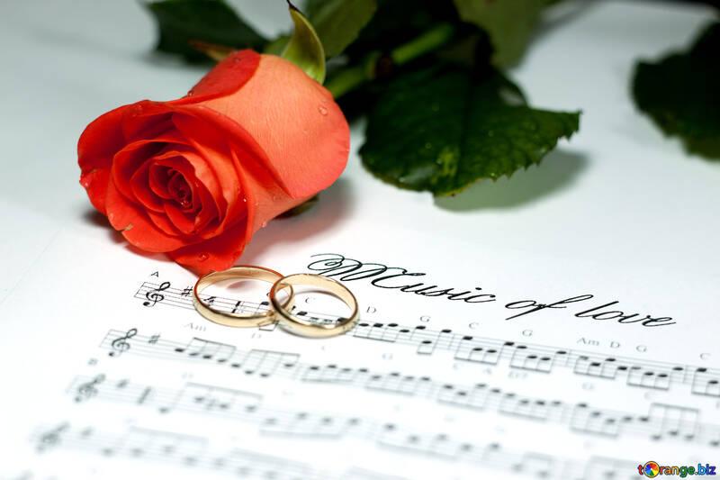 Melodía  amor №7247