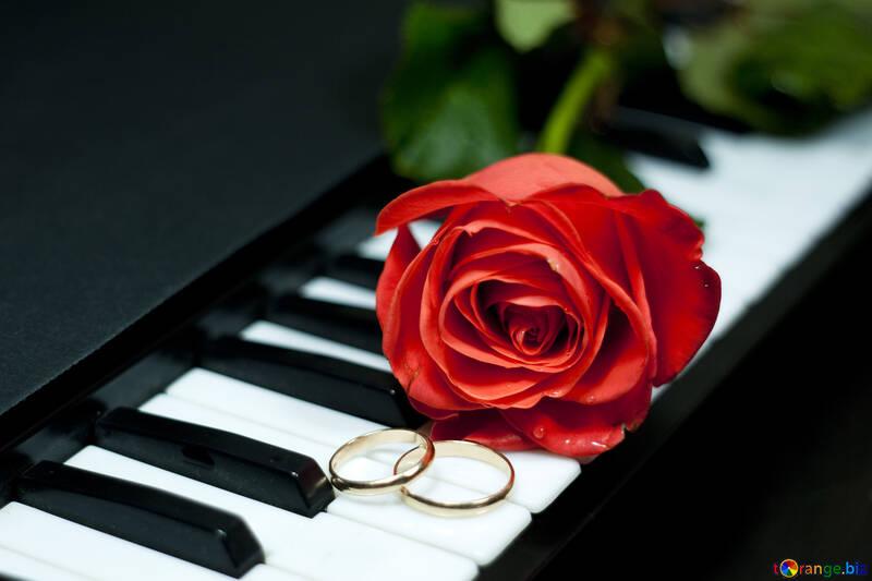 Música en boda №7197