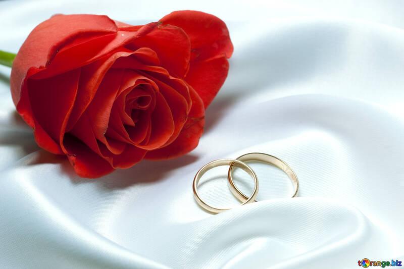Mariage nuit №7221