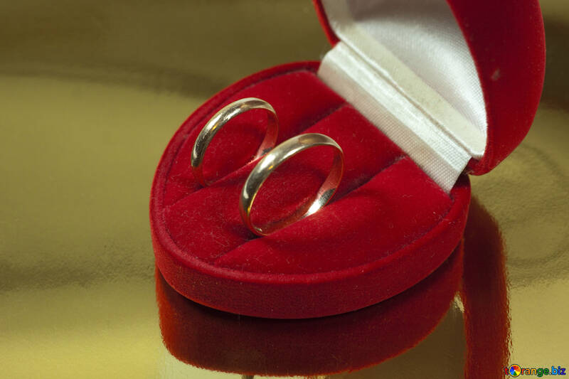 Cerimonia nuziale anello №7125