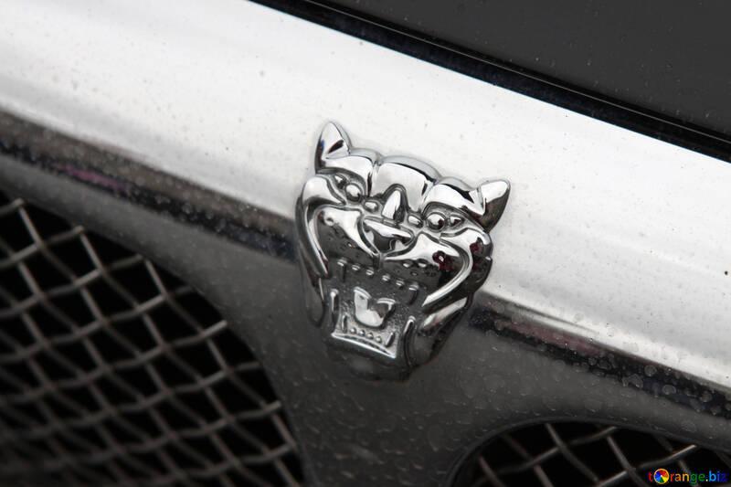 Icon  Jaguar №7579