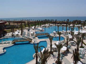 Large  pools. №8325