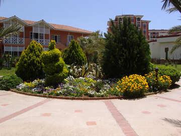 Blume-Garten №8900