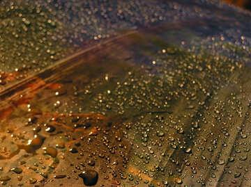 Water drops №8051