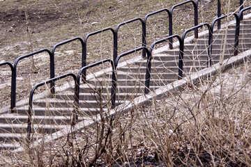 Street  Ladder №8726